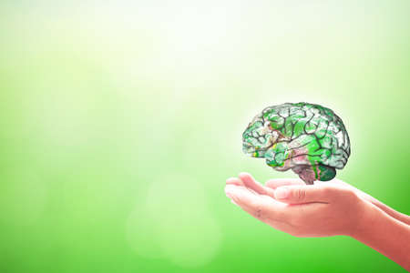 World mental health day concept: Human hands holding brain of earth over blurred nature background.