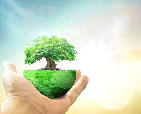 World environment day concept: Human hand holding big tree with earth globe of grass on blurred world map of clouds background Stock fotó