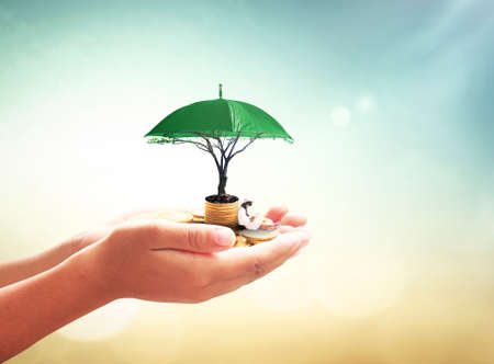 Safety money concept: Human hand holding a girl reading book, stack of golden coins, umbrella and big tree on blurred nature background
