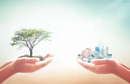 World environment day concept: Two human hands holding big tree and city over blurred nature background Stock Photo