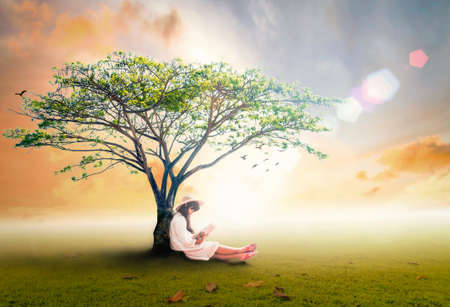 Read a book day concept: Asian girl reading fantastic book under big tree in autumn sunset background Banque d'images