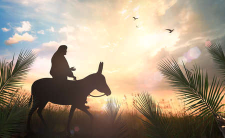Palm Sunday concept: Silhouette Jesus Christ riding donkey on meadow sunset background