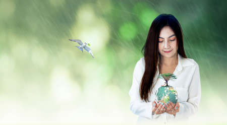 World environment day concept: Asian woman hands holding earth globe with big tree against blurred green forest with rain sunrise background. Elements of this image furnished by NASA