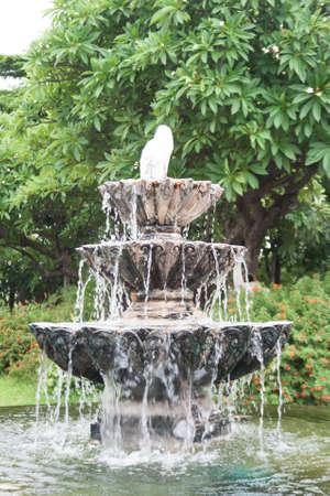 the third Water fountain in garden photo