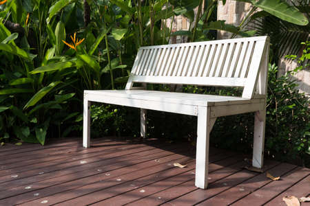 white bench on wood path in garden  photo
