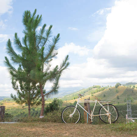balcony view: a beautiful old white bicycle in balcony view of green mountain with pine tree Stock Photo