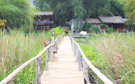closeup bamboo way wooden bridge