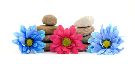 therapy stones with flowers isolated Stock Photo