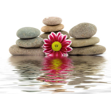 zen spa stones with flowers Stock Photo - 2811497