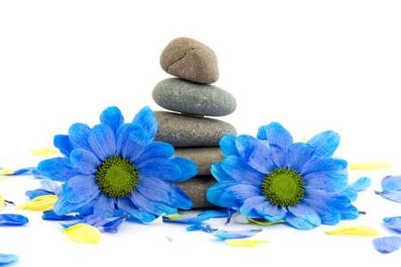zen stones with flowers studio isolated Stock Photo