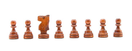 animal idiot: idiot in the team concept - chess figures isolated