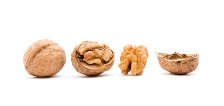dry walnut fruit studio isolated closeup Stock Photo - 3915113