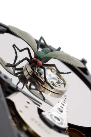 micro drive: computer bug concept - bug on a hard disk studio isolated