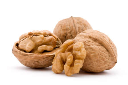dry walnut fruit studio isolated closeup photo