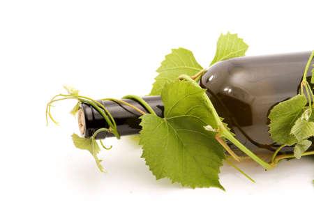 bottle of wine studio isolated Stock Photo - 4308074
