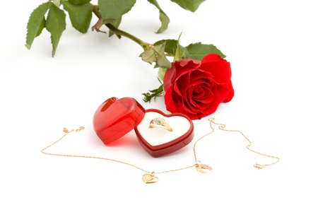red rose and gold ring studio isolated photo
