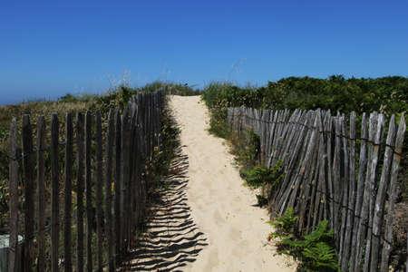 beach access: Old wooden fence beach access on a beach in Ile dYeu Island, Vendee, France
