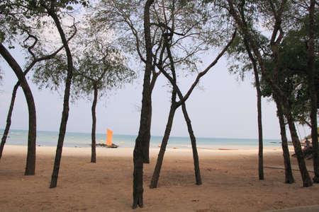 beach access: Beach access in Sai Kaew Beach Sattahip, Thailand Stock Photo