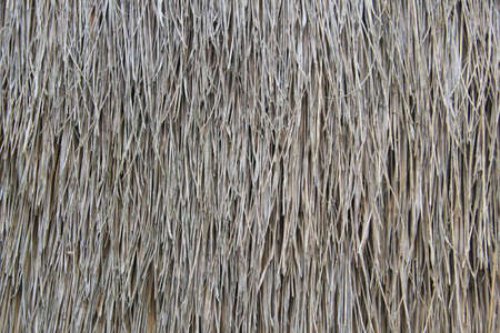 Thai Style Thatching Straw Wall abstract background texture.