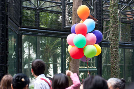 colorful ballons in a crowd of zoo photo