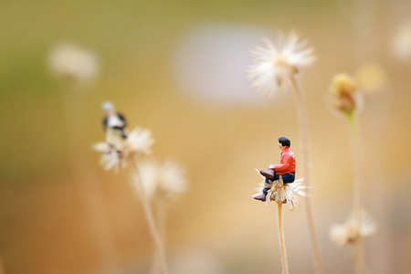 dandelion field: Close up of miniaturetwo man talking together on the flower like Dandelion. Shallow depth of field composition and soft pastel color.