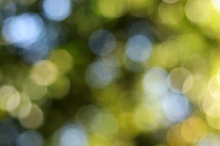 abstrakter bokeh grüner Hintergrund und grüner unscharfer Hintergrund und Hintergrundunschärfe auf natürlichem