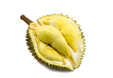 cleave: Mon Thong durian fruit on white background