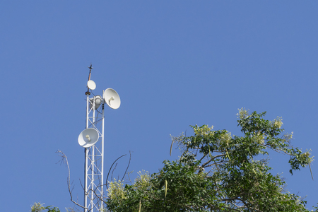 Receiving antenna wifi and tree with blue sky Stock Photo