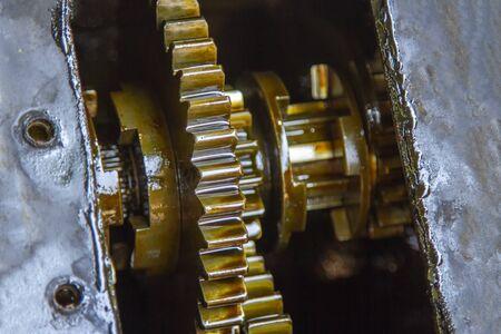 Gears with oil of service transmission gear Stok Fotoğraf