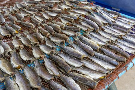 Sun dried fishes meat for cooking food