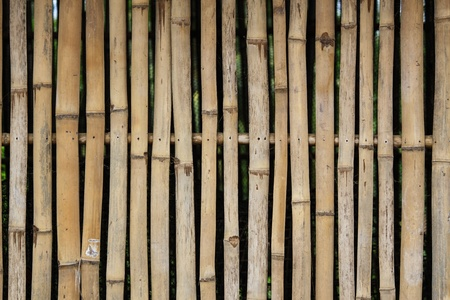 Old bamboo pattern on a wall photo