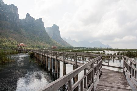 The Nature Trail Wooden Bridge photo