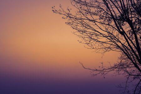atmosfera: La atm�sfera de la ma�ana en la monta�a