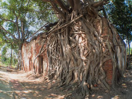 ang thong: Old Temple in Ang Thong Province of Thailand
