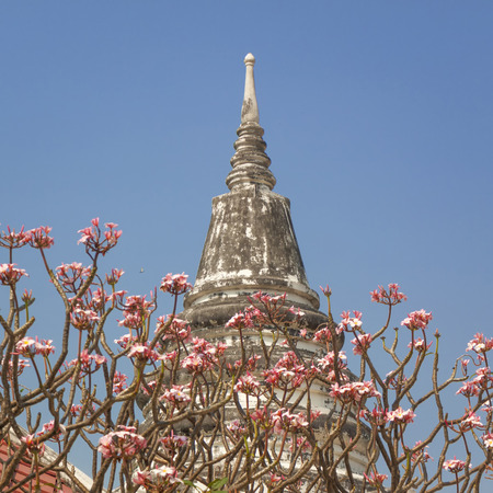 The Pagoda in Ayutthaya Province of Thailand