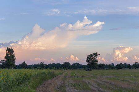 Evening sky of Thailand