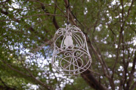 Old lamps in the garden 版權商用圖片