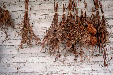 dried flowers hanging on the wall