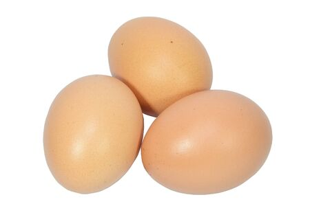 eggs on a white background photo