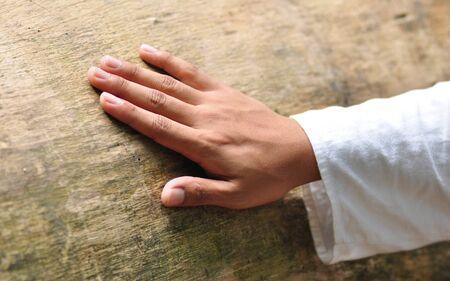 a cedar: Una mano, colocada sobre el tronco