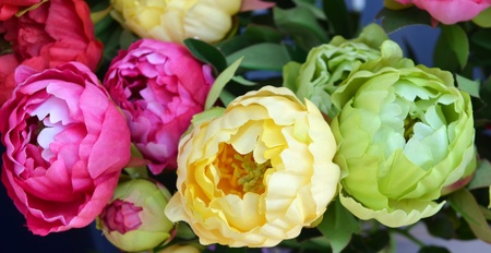 The background of the beautiful flowers in colorful Stock Photo - 13589472