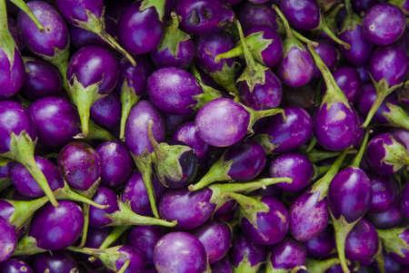 Eggplant Stock Photo - 16767945