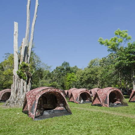 camping site: Camping site with nature