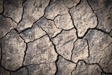 Background of dry cracked soil dirt or earth during drought photo