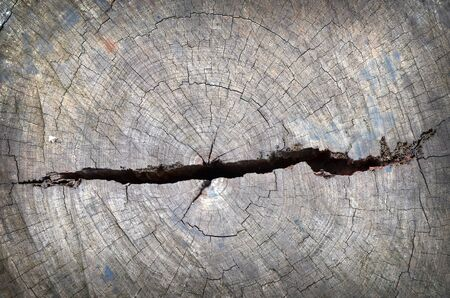 Grunge of texture wood materials background Stock Photo - 17980211