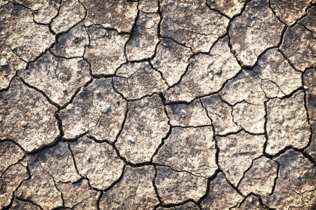 details of Dry cracked soil Stock Photo