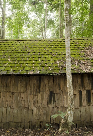 Old cottage, old wooden house, with moss among trees photo