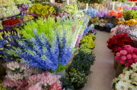 sidewalk sale: Colorful flowers in a flower shop on a market Stock Photo