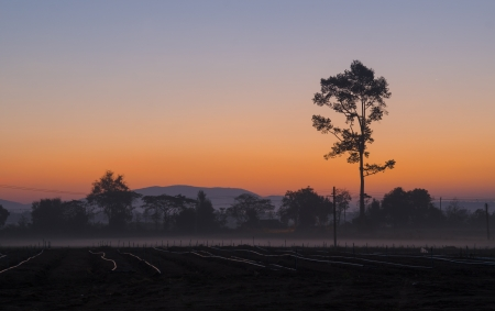 beautiful sunset over agricultural site photo