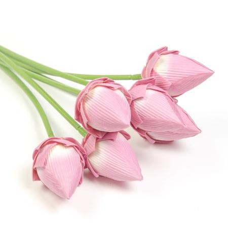 Hermosa flor de loto (flor de loto aislado sobre fondo blanco) photo